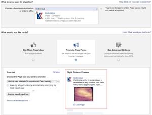 Nastaveni cileni Facebook PPC kampane